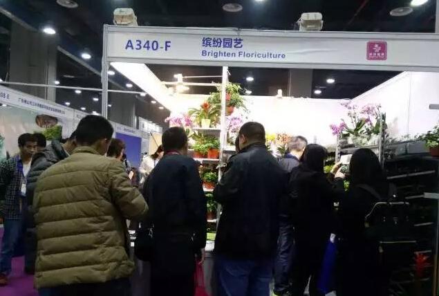 China International Floriculture & Horticulture Trade Fair 2020_last_image_7